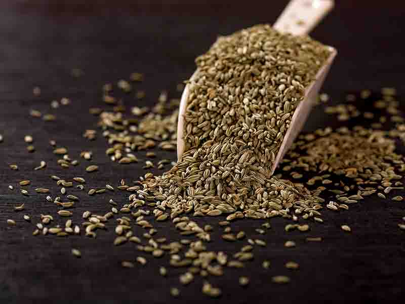 Fennel Seeds To Prevent Body Odor