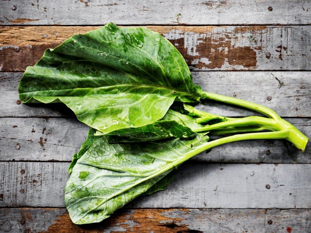 Kale - A Calcium Food Source
