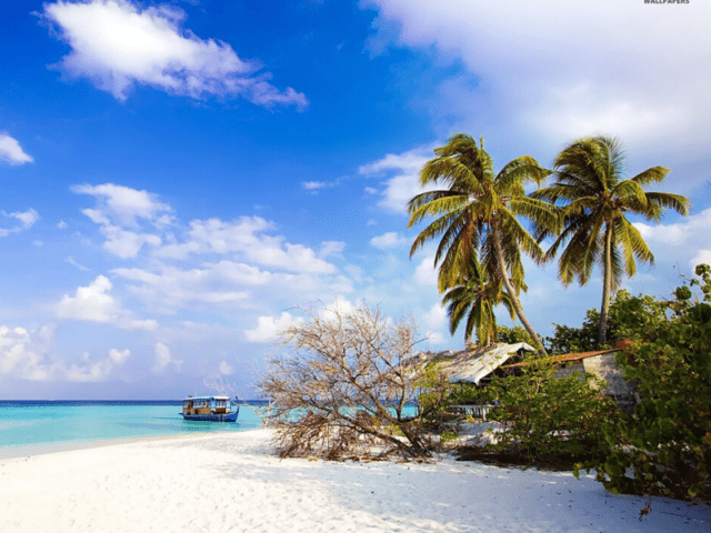 Andaman And Nicobar - Popular Summer Vacation Destination For Enjoying Beach Life
