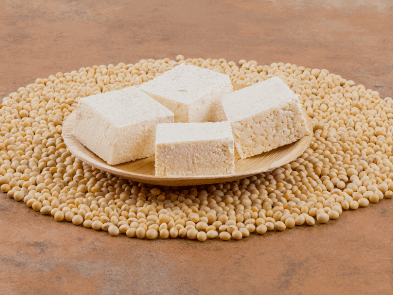 Paneer - High Protein Food