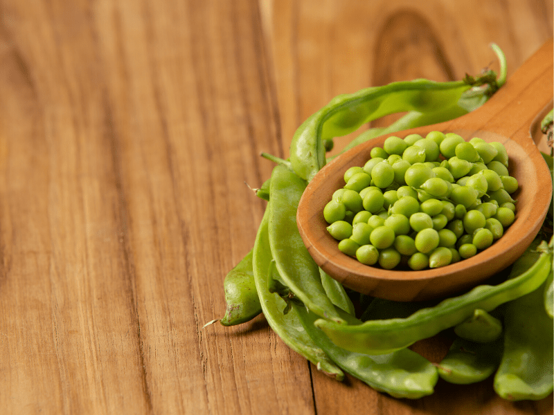Peas - Protein Rich Food