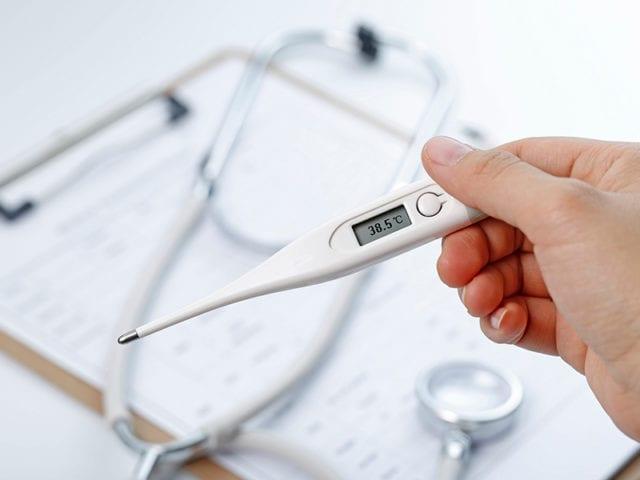 Ghee Regulates Body Temperature