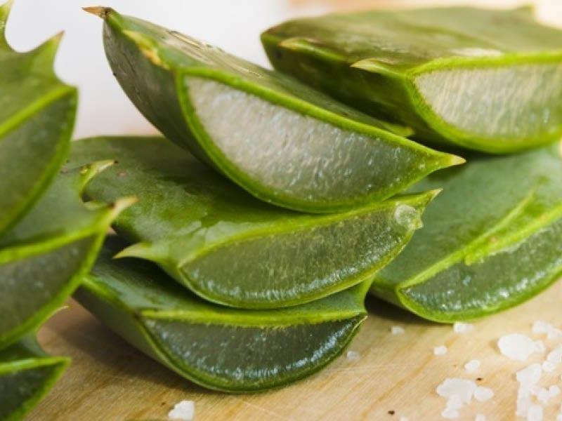Aloe Vera For Oily Skin Issue