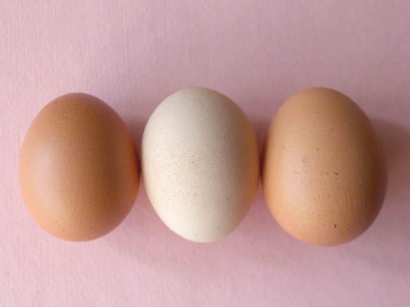 Egg Face Mask For Oily Skin Problem