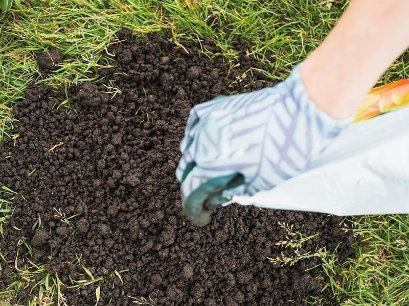 Natural Fertilizers And Pesticides