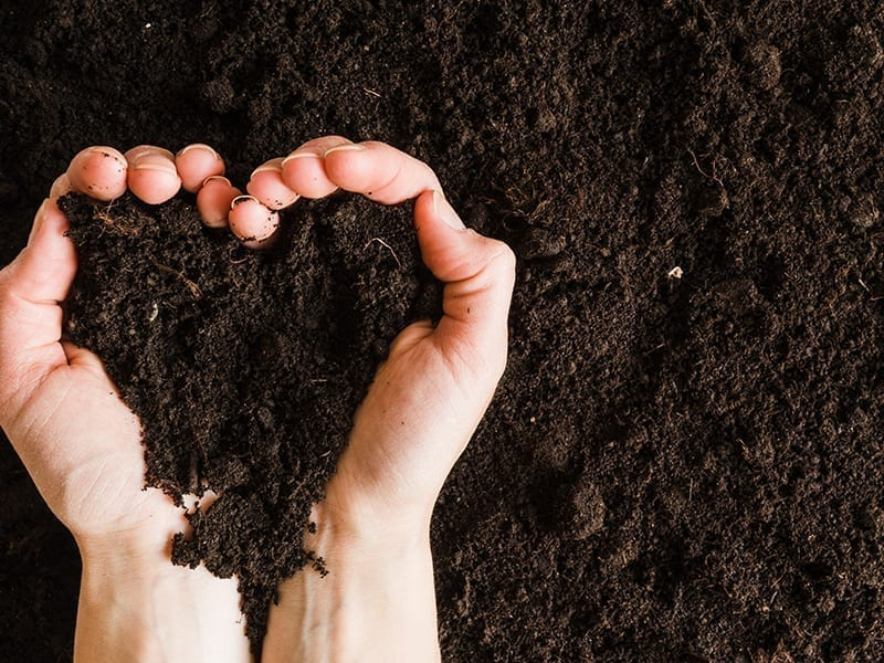 Use Best Kind Of Soil